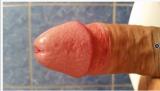 Titkos88 - Biszex Férfi szexpartner Esztergom
